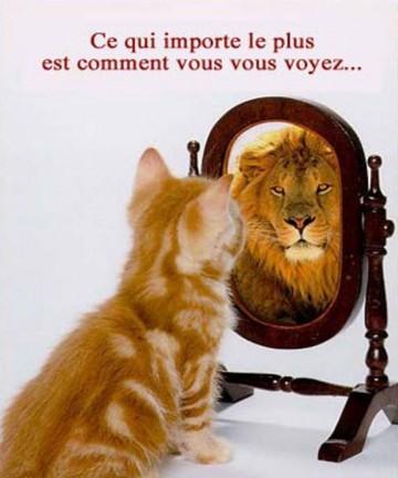 [Vidéo] Christophe André : L'estime de soi