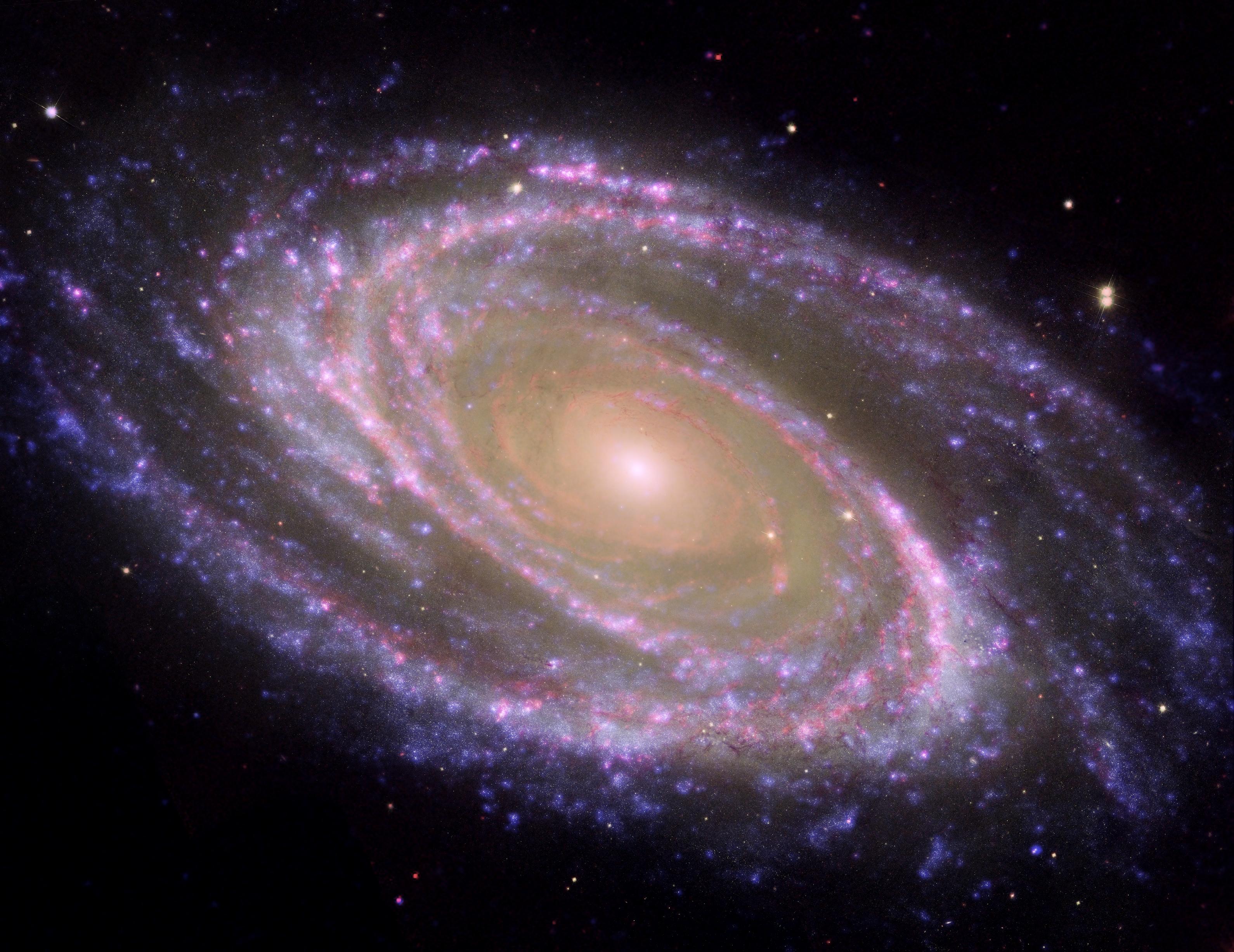 La Spirale Dynamique : se connaître soi, les autres et l'humanité (Partie 2/2)
